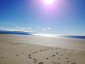 sunny tahunanui_beach